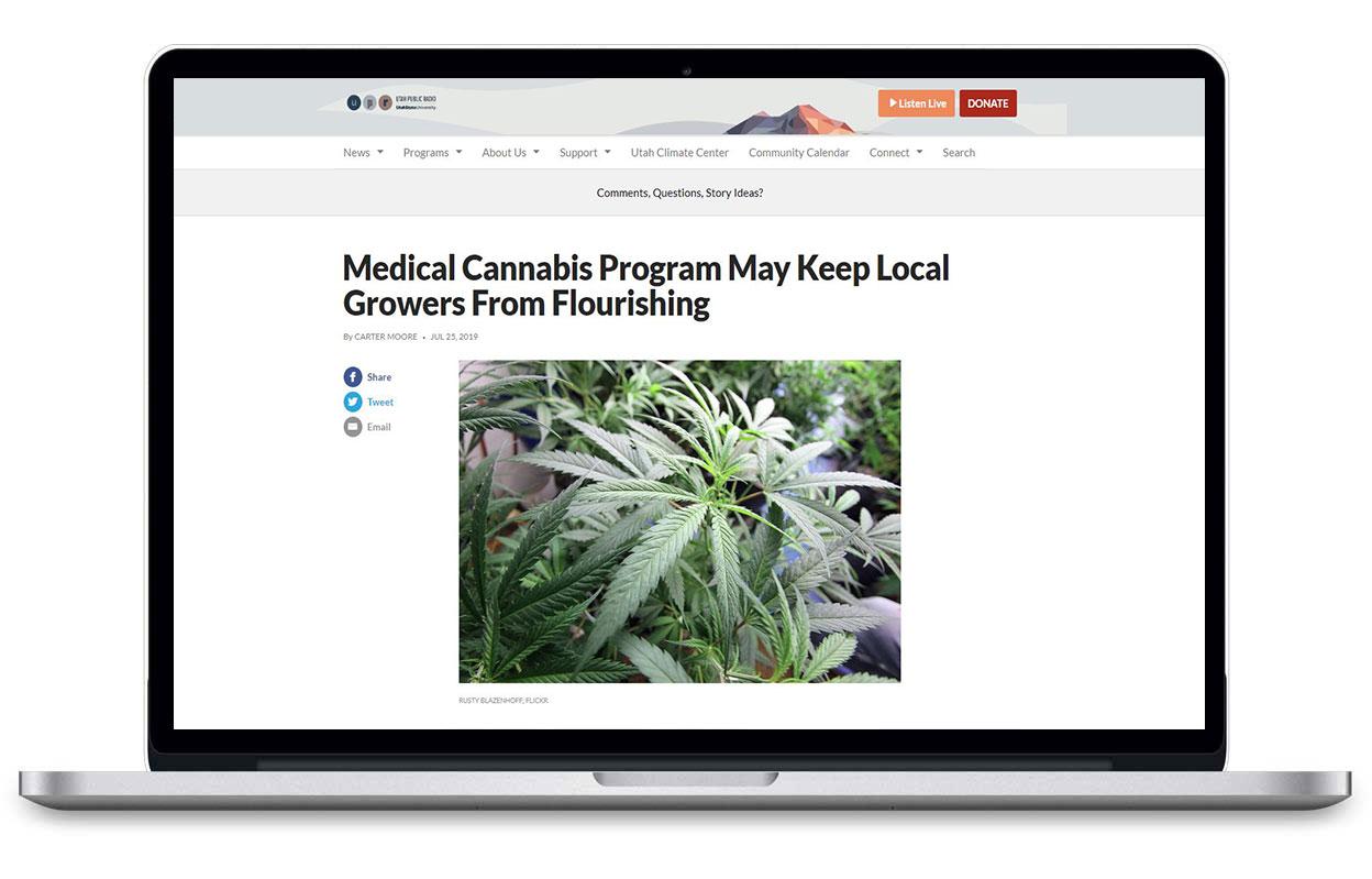 Laptop browsing Utah Public Radio about Medical Cannabis