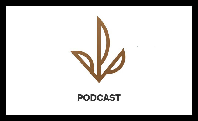 Check out Ep.5 – The Political and Business Landscape of Cannabis with Avis Bulbulyan